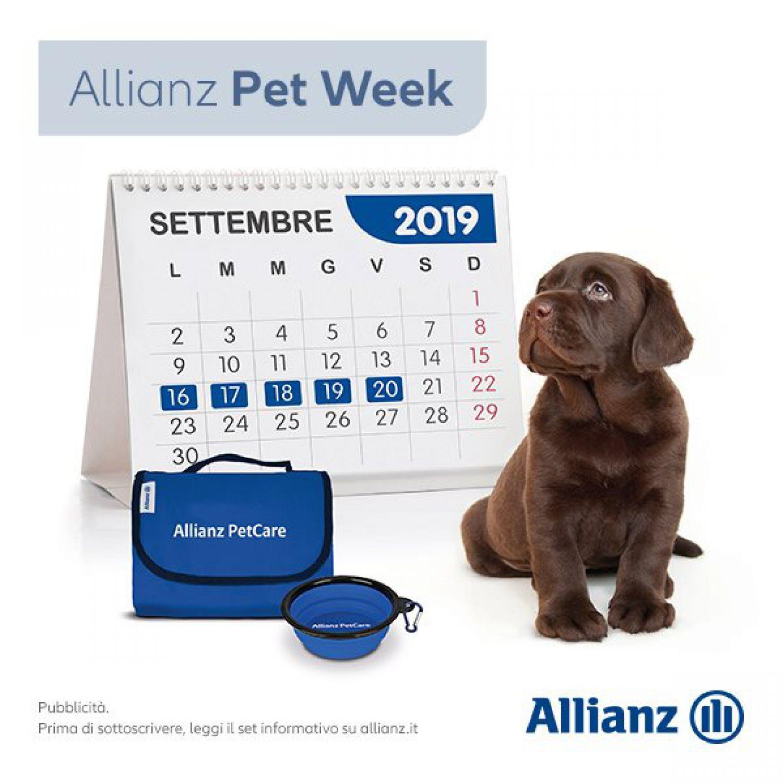 Proteggi il tuo cane o il tuo gatto con Allianz PetCare
